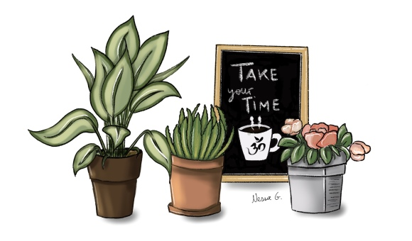 Tres plantas y una pizarra con un café que dice: take your time.